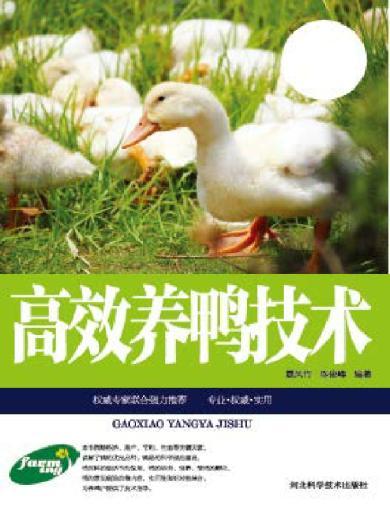 高效养鸭技术