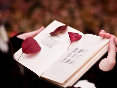 培養讀書習慣,給你5個行之有效的方法!