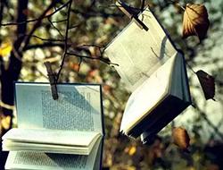 你不是書讀得少,而是經典讀得少
